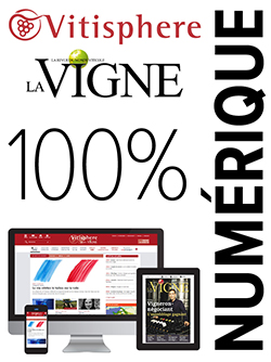 Vitisphere La Vigne 100% Numérique